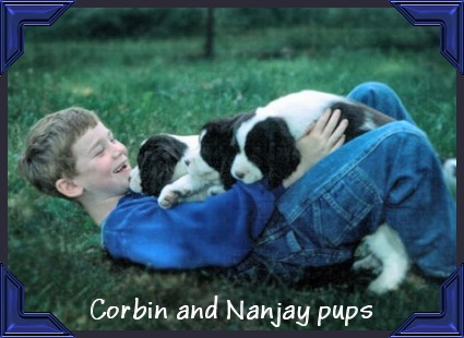 Corbin and Nanjay puppies