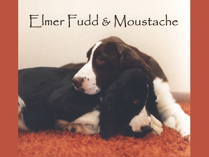 Elmer Fudd and Moustache