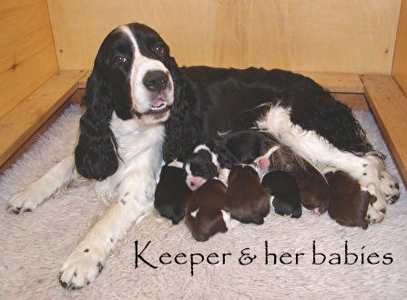 Keeper and her babies