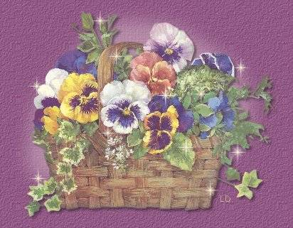 Pansies for Mom